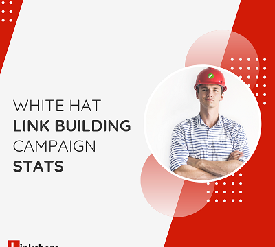 100% White Hat Link Building Campaign Stats